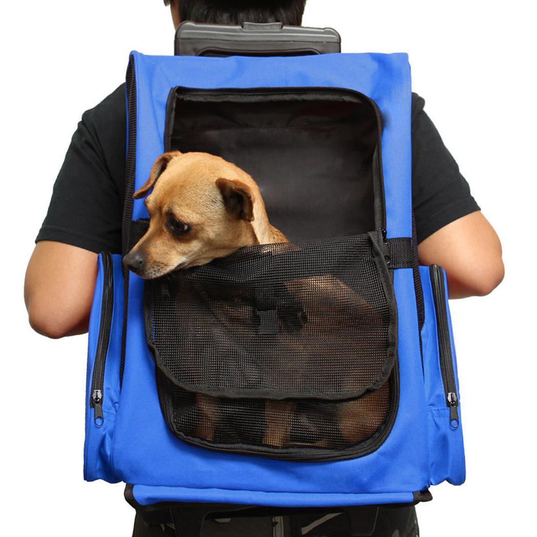 rucksack trage haustier tasche f r katzen hunde. Black Bedroom Furniture Sets. Home Design Ideas